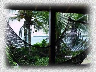 nice ocean view from room hammock